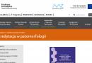 Ministerstwo Zdrowia o standardach w patomorfologii